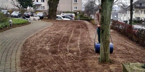 Tag 3: Rasenfläche walzen